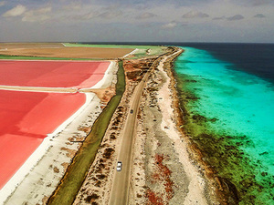 Bonaire South Side Island Sightseeing Excursion