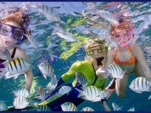 Cabo San Lucas 2 Bay Guided Snorkel Excursion