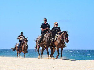 Cabo San Lucas ATV and Horseback Riding Adventure Excursion