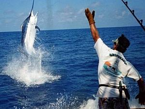Cabo San Lucas Private Sport Fishing Charter Excursion
