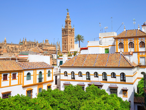 Cadiz to Seville, Self Paced Sightseeing Excursion