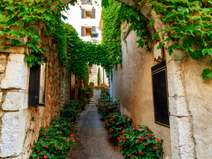 Cannes, St. Paul de Vence and Antibes Sightseeing Excursion