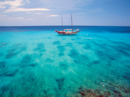 Montego Bay shopping Cruise Excursion