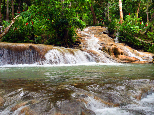 dunns river falls shore excursions from ocho rios