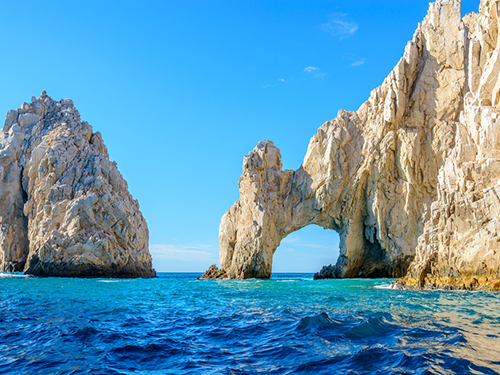 Cabo San Lucas Sea of Cortez wildlife Shore Excursion Prices