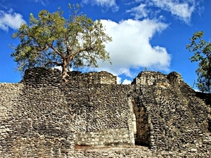 Costa Maya Private Kohunlich Mayan Ruins Excursion
