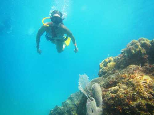 Cozumel Island SNUBA Diving and Snorkeling Chankanaab Lagoon Shore Excursion Reservations
