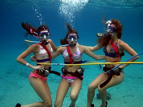 Cozumel snorkeling Prices