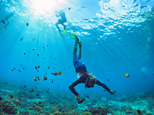 Cozumel beginners scuba Shore Excursion Reservations