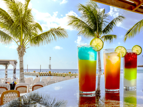Cozumel Buffet and Open Bar Cruise Excursion Cost