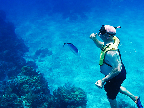 Cozumel  Mexico Paradise Reef Snorkel Cruise Excursion Prices