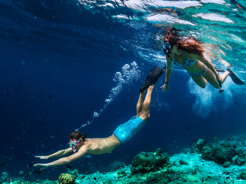 Cozumel Cozumel snorkeling Excursion Tickets