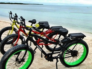 Cozumel Electric Bike East Side Road Ride Excursion