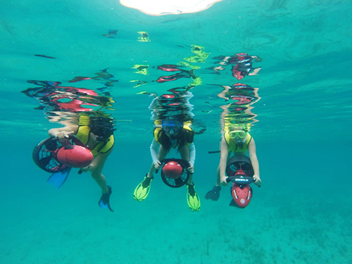 Cozumel Mexico Reef Shore Excursion Prices