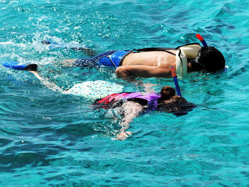 Cozumel island learn to scuba dive Tour Tickets