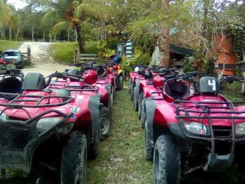 Cozumel Jungle ATV Excursion Reservations