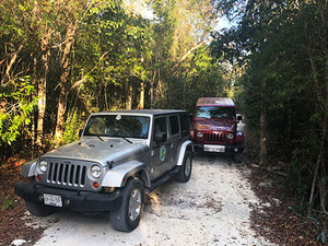 Cozumel Jungle Jeep, Jade Cavern, Cenote Swim and Snorkel Adventure Excursion