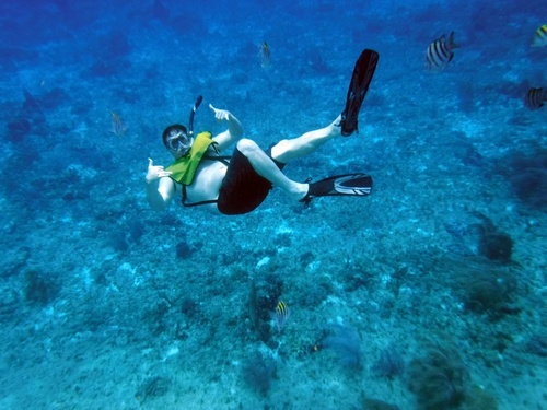 Cozumel sail and snorkel Cruise Excursion Tickets