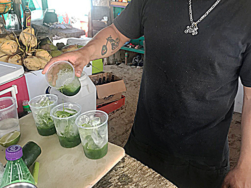 Cozumel Coconuts Bar Cruise Excursion Tickets