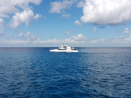 Cozumel Mexico coral formations Cruise Excursion Reviews