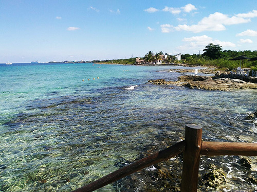 Cozumel Mexico Coral Reef Excursion Booking