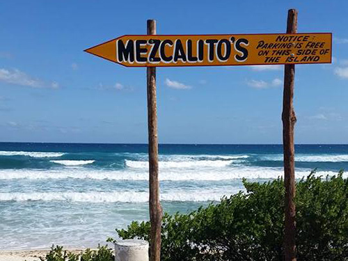 Cozumel Mexico Coconuts Bar Shore Excursion Reviews