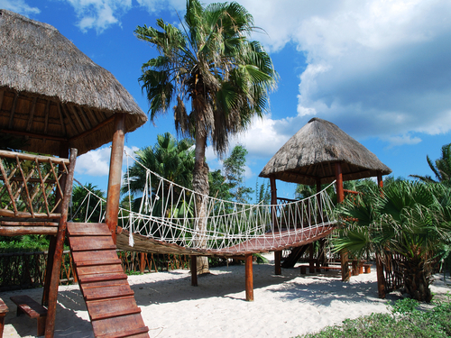 Cozumel bus sightseeing Excursion Reviews