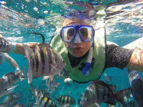Cozumel Mexico Snorkeling Shore Excursion Tickets