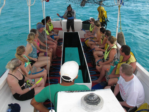 Cozumel Mexico tropical fish Trip Cost