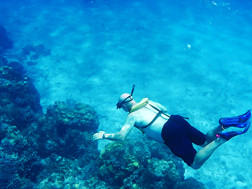 Cozumel  Mexico Tortugas Beach Snorkel Excursion Tickets