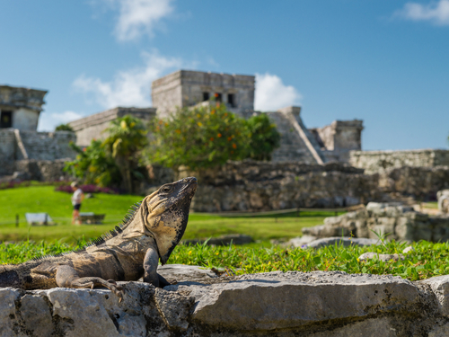 Cozumel Mexico Tulum Mayan Ruins Excursion Reservations