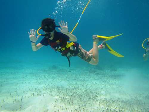 Cozumel Port SNUBA Diving Shore Excursion Cost Reservations