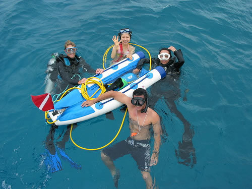 Cozumel Port Swimming Tour Tickets Reviews