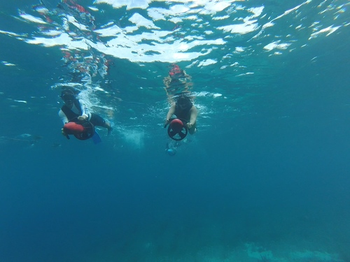 Cozumel Mexico Power Snorkel Excursion Tickets