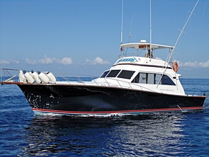Cozumel Private Big Game Deep Sea Fishing Yacht Boat Charter Excursion