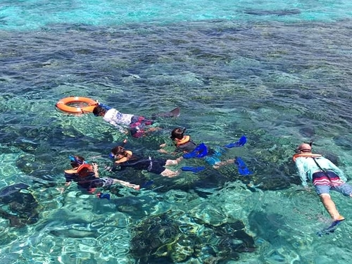 Cozumel  Mexico snorkel Trip Reservations