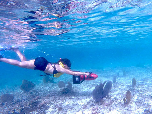 Cozumel Mexico Power Snorkel Cruise Excursion Prices