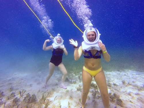 Cozumel  Mexico SEATREK Chankanaab Tour Cost