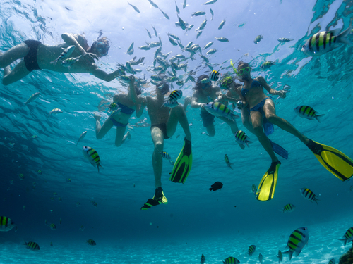Cozumel Snorkeling Trip Prices