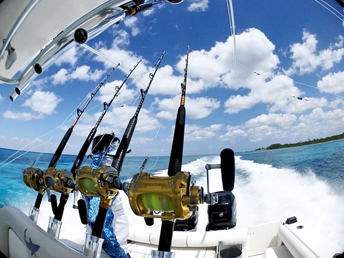 Cozumel deep sea fishing Shore Excursion Prices