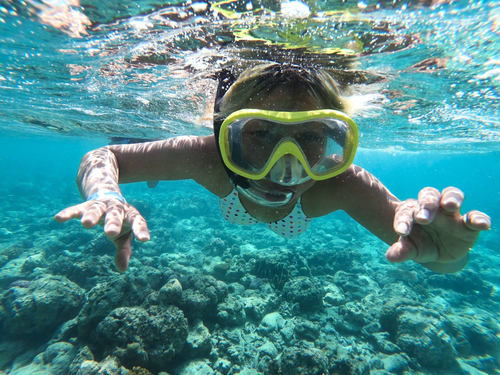 Cozumel Swimming Shore Excursion Reservations