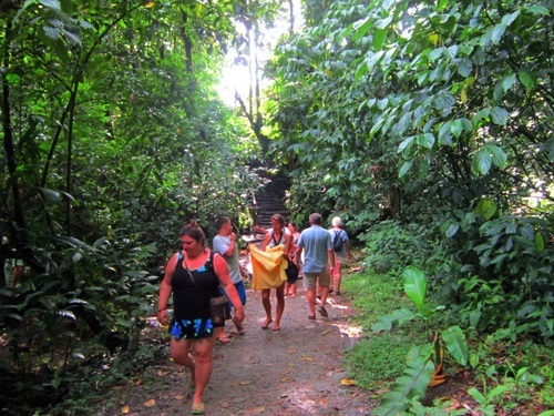 Dominica Trafalgar Falls Excursion Booking