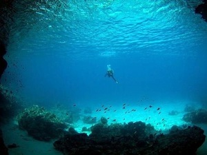 Curacao Beach Hopping and Blue Room Cave Snorkel Excursion