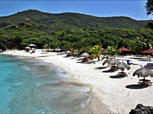 Curacao Flamingos, Boca Tabla Cave Park and Kenepa Beach Excursion