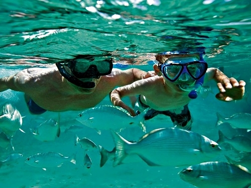 Curacao guided snorkel Excursion Reservations