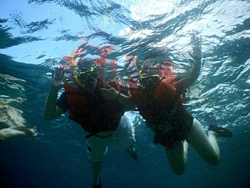 Curacao Willemstad tugboat wreck snorkel Cruise Excursion Prices