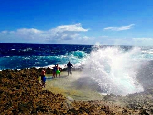 Curacao island tour Shore Excursion Prices