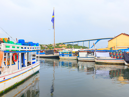 Curacao Flamingo Area Sightseeing Excursion Reviews