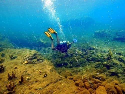 Dominica padi Shore Excursion Reviews