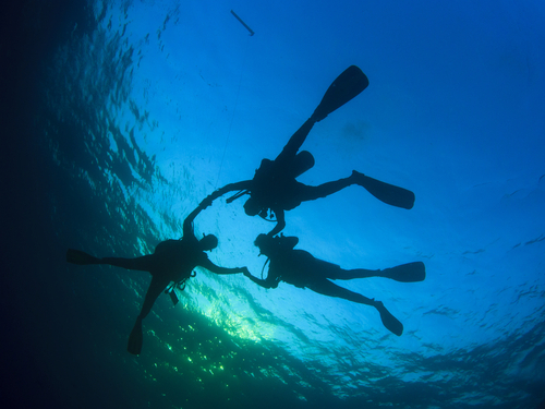 Roatan beginners dive Cruise Excursion